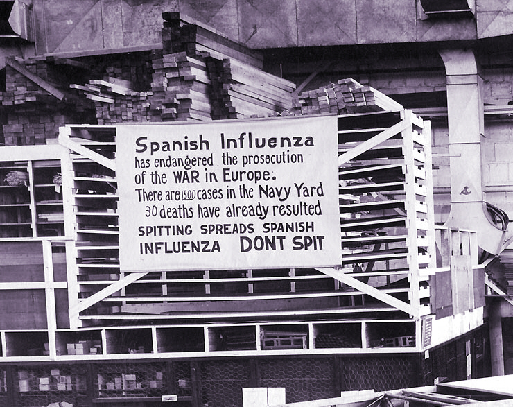 Spanish influenza essay
